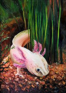 Axolotl von Dorothee Rund