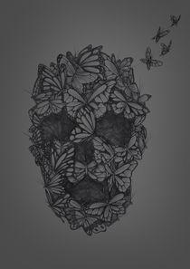 Exstinctio Papiliones von Jhonatan Silva
