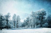 Frozen Landscape von Eva Stadler