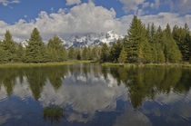 Grand Tetons at Schwabacher von Barbara Magnuson & Larry Kimball