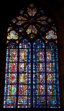Stained-glass Window, Tours von safaribears