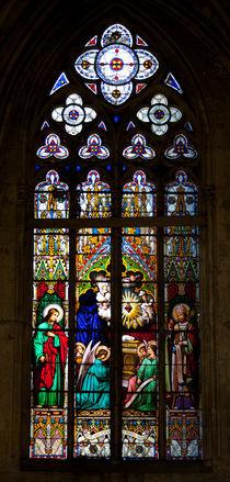 Stained-glass Window, Tours von safaribears