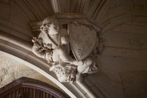Chimera in Amboise by safaribears