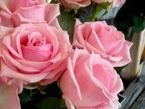 Perfect Roses von Jessie Hubbard