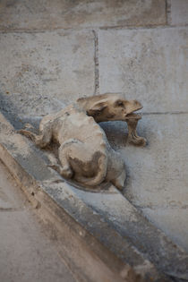 Gargoyle on Blois Cathedral by safaribears