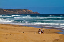 Surf Fishing on Gunnamatta Beach von Louise Heusinkveld