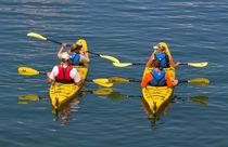 Kayaking von Louise Heusinkveld