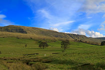Mallerstang Dale in Cumbria UK von Louise Heusinkveld
