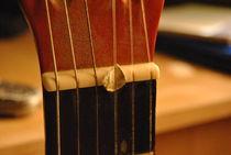 guitar von Dario Fiorentino