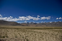 Around Tsokar Lake, Spiti Valley, INDIA von Alessia Travaglini