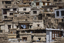 Houses in Leh, INDIA by Alessia Travaglini