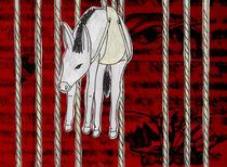 Flying Donkey von Alessia Travaglini
