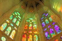 Sagrada Familia, Barcelona by Paolo Grava