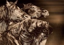 3 Horses II von gnubier