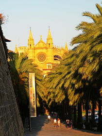 Majorca walking street to the Cathedral  von marga-sol