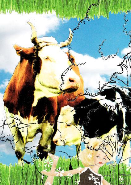 Cows-a4