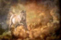 Wolkenpferd von Marie Luise Strohmenger