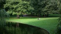 Magic-light-in-oslo-park