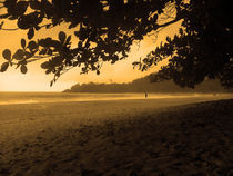 Sunrise in Ubatuba's beach by Adriana Schiavon