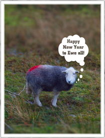 Happy New Year to Ewe all by Chris Atkinson