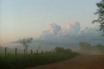 Pantanal-dust
