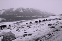 Patagonia-montain