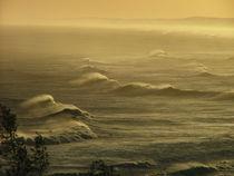 Surf-on-sunset