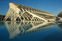 Valencia, Museo de las Ciencias 1 by Frank Rother