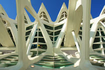 Valencia, Museo de las Ciencias 2 by Frank Rother