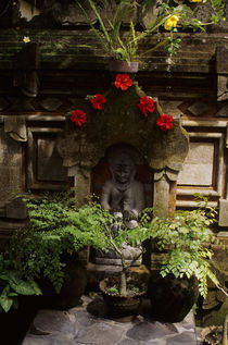 Statue with Hibiscus Flowers by Wolfgang Kaehler