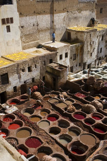 Overview of Tanneries von Wolfgang Kaehler