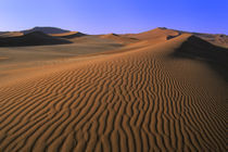 Sand Dune with Ripples by Wolfgang Kaehler