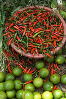 Chili Peppers and Lime von Wolfgang Kaehler