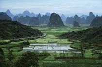 View of Lime Stone Mountains with Fields Near the Li River by Wolfgang Kaehler