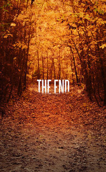 The End von Mark Bolek