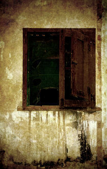 Old and decrepit window by RicardMN Photography