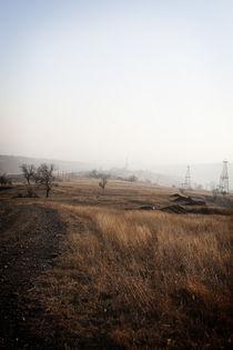 Fields by Adrian Sandor