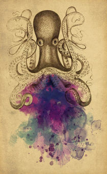 'Octopus' by axel haudiquet