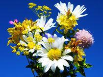 Wildflowers  by Dejan Knezevic
