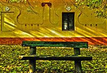 Bench in Autumn by Dejan Knezevic