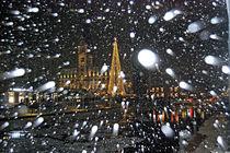 Schneeflocke von Daniela  Bergmann