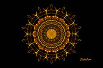 Queen Bee Sunflower (signed) von Richard H. Jones