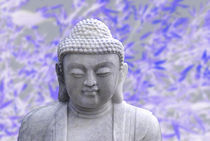 20111229-dsc-0148-buddha-blue01-soft