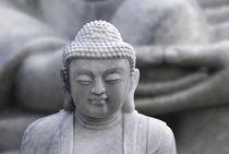 buddha (mudra) by hannes cmarits