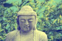 20111229-dsc-0148-buddha-green01-soft-bearbeitet-2
