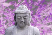 20111229-dsc-0148-buddha-violet-soft
