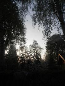 Schatten von Bäumen von Kathrin Kiss-Elder