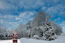 Weihnachtsmann  by Cornelia Dettmer