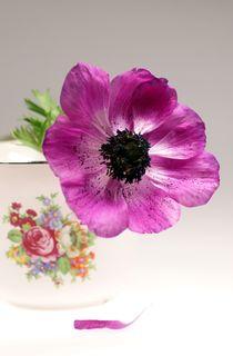 Tasse mit Blüte by lichtbildersalon