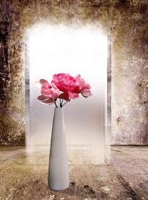 Rosen erhellen jeden Raum von Ingrid Clement-Grimmer